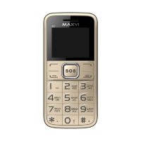 Maxvi B2 gold