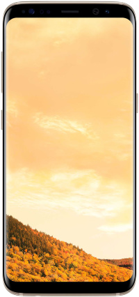 Samsung Galaxy S8 G950 64Gb Gold