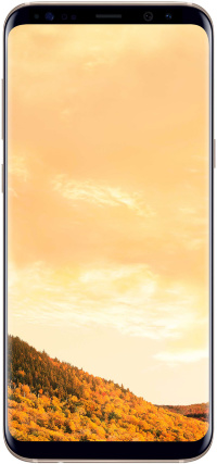 Samsung Galaxy S8+ G955 64Gb Gold
